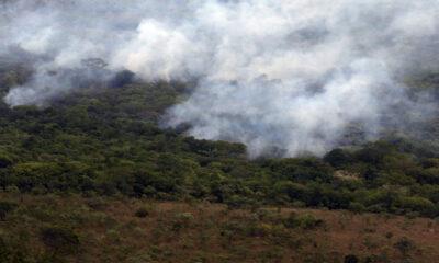 Queimadas no Brasil