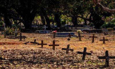 Dia de Finados: cemitério é destino dos que prestam luto aos falecidos